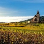 When to go Wine Tasting in Europe